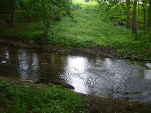 Das Flüßchen Beke plätscherte heute gemütlich vor sich hin und leidet auch unter der Wasserarmut.