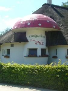 """Trotz der Trockeheit überaschte uns auf unserer Fahrt nach Peine die überdimensionale Fliegenpilz der zu gastlicher Berirtung einludt. Er gehört zum Landgasthaus """"Zum Pilz"""", Lüneburger Straße 9."""
