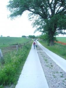 Die letzten 500 Meter bis nach Wiechmannsdorf ging es an einer Viehweide vorbei.