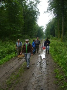 Und weiter geht die Wanderung bei nassem, schwülwarmen Wetter, so dass wir uns fast vorkamen wie im tropischen Regenwald. 06.08.2011.