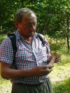 Pilzberater Klaus Warning mußtert diesen großen Täubling mit den rot überlaufenen Stiel recht kritisch, aber der Heringsgeruch besonders an der Stielbasis schuf dann schnell Klarheit: Roter Herings - Täubling. 20.08.2011.