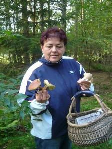 Die Maronen wären auch ohne Pilzberater in den Korb gewandert, die Perlpilze währen aber wohl im Wald geblieben.