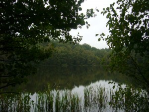 Idyllisch liegen die Seen hier umschlossen von dichten Wäldern. 10.09.2011.