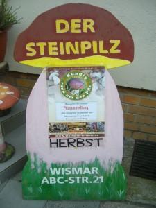 Unsere Steinpilze wiesen nicht nur vor dem Laden, sondern auch an anderen Stellen in der Stadt auf dieses Ereigniss hin.