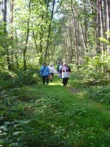 Das Wetter war herrlich und die Stille des Waldes eine Wohltat!