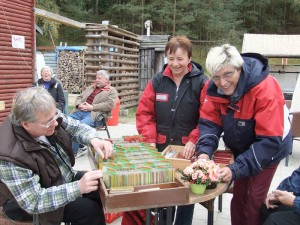 Beim Aufbau der Ausstellung halfen einige Pilzfreunde tatkräftig mit.
