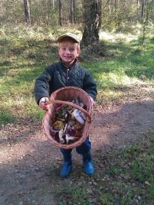 Nachdem er sich im Auto bei Partentante Sina aufgewärmt hatte, ging es aber wieder in den Wald und im großen Korb sah es nach kurzer Zeit recht kunterbunt aus. Natürlich für Papa und seine Pilzausstellung.