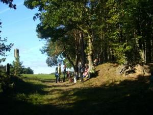 Und nun ist hier am Waldrand Pause und Aufwärmen in der Sonne angesagt