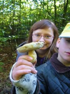 Und das ist schon wieder ein Kornblumen - Röhrling, den Jonas und Sina hier fanden.