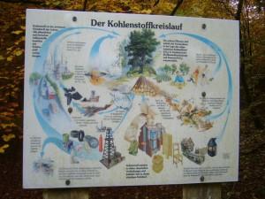"""Am Rande des Naturschutzgebietes """"Schwarzer See"""" informieren einige Schautafeln über wichtige Vorgänge und Zusammenhänge im Kreislauf der Natur."""