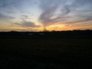 Mit der Abendämmerung über dem großen Wariner See geht das Pilzjahr 2011 am späten Nachmittag des 30. November zu Ende