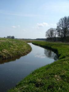 Die Warnow in der Nähe von Bühlow, am Rande der Barniner Tannen. Hier wollen wir heute entlang wandern und hoffen dabei auch einige, interessante Frühlingspilze zu finden. Foto am 15. April 2012.