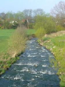 Gleich zu Beginn des Wanderwegs am Hellbach wurde diese Fischtreppe ganz neu angelegt und ein Rastplatz