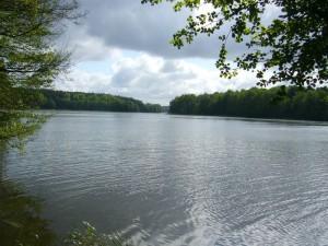 Der Barniner See hat eine Länge von rund drei Kilometern und ist bis zu 7,5 m tief. Die Warnow durchfließt dieses Gewässer. Foto:13.05.2012.