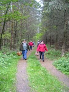 Trotz wenig Frischpilze führte und die Dame in roter Jacke gut gelaunt durch dieses schöne Waldgebiet, dass in fortgeschrittener Jahreszeit sicher einiges für den gemeinen Pilzsammler zu bieten hat.