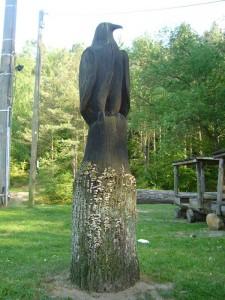 Diese große Vogelstatue aus Holz hat massive Probleme mit Fußpilz bekommen. Der Sockel wird verziert non zahlreichen Konsolen des Striegeligen Schichtpilzes (Stereum hirsutum). Foto am 23.05.2012.