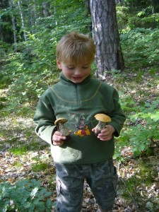 Zuerst hatte Jonas keine rechte Lust nach dem erfrischenden Bade noch mit in den Wald zu kommen, freute sich aber schließlich dennoch über diese schönen Rotkappen. 28.05.2012 im Naturpark Sternberger Seenland.