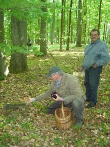 Wolfgang Schellberg aus Grevesmühlen hat hier einen Fototermin mit einem Sklerotienporling. Stehend unser dienstältester Pilzfreund Hans Jürgen Wilsch. Er geht schon seit sechs jahrzehnten von Wismar aus zu unseren geführten Pilzwanderungen in die Wälder der Umgebung.