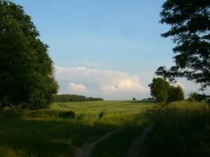 So sah der Himmel heute Nachmittag aus. Neben viel blauen Himmel, reichlich Wind und mässig warmen Temperarturen, türmten sich hier und da mächtige Schauer- und Gewitterwolken auf und brachten vereinzelt einen kurzen Regenguss. Dieses Foto habe ich aber schon gestern Abend bei Wietow, unweit von Wismar aufgenommen.