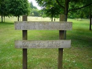 Dann erreichten wir die wunderbar gepflegte und informative Anlage des Forstamtes Gädebehn.