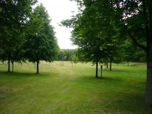 """Großzügig wurde hier ein Baumpark mit den bisherigen """"Bäumen des Jahres"""" angelegt."""