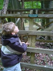 Sohn Jonas war heute wieder mal mit von der Partie, dabei bot sich diese jagdliche Einrichtung zu einer kleinen Lese - Übung an.