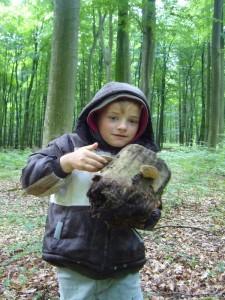 Und dann hat er etwas tolles für Papas Ausstellung entdeckt. Ein schon ganz wackliger Eichenstumpf mit Pilzen dran.