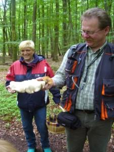 Unsere Pilzfreunde Sabine Kock aus Schwerin und Thomas Harm aus Wismar freuen sich hier über diesen schönen Birken- und Löwengelben Porling.