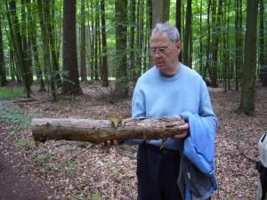 Pilzfreund Friedrich Wojekowsk aus Berlin möchte gerne Wissen, welche Pilzart wohl diesen Holzknüppel besiedelt hat? Es ist ein jung essbarer Sklerotien - Porling!