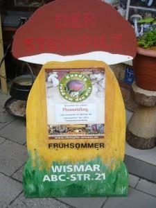 """Für fast nur einen symbolischen Euro konnte sich unsere Ausstellung """"Die Großpilze im Wandel der Jahreszeiten - Frühsommer"""" angeschaut werden."""