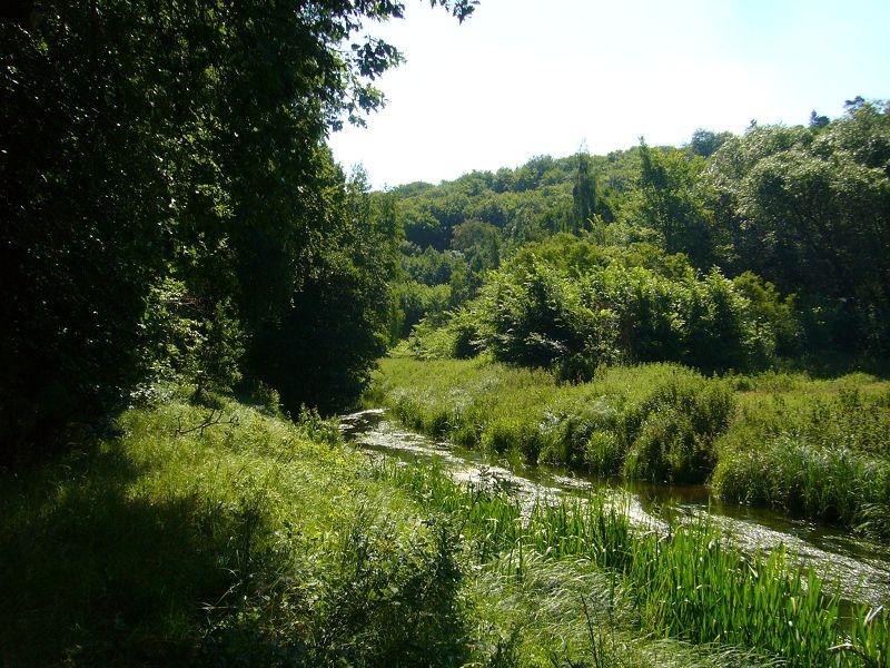 Idyllisch schlängelt sich das hier noch recht schmale Flüßchen durch die herrliche Landschaft.