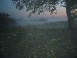 Es war schon fast dunkel, als ich dieses Foto zwischen Sagsdorf und Sülten machte. Über den noch teils von Hagel gefüllten Senken der Wiesen und Felder bildet sich verdunstungsnebel. Gleichzeit läßt es sich erahnen, mit welcher Wucht der Hagel das Laub dieser alten Eiche auf die Strasse schlug. Wehe dem, der ohne Schutzhelm unterwegs war!