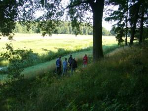 Und weiter geht es entlang der Warnow - Wiesen und den oft bewaldeten Hängen in Richtung Vorbeck.
