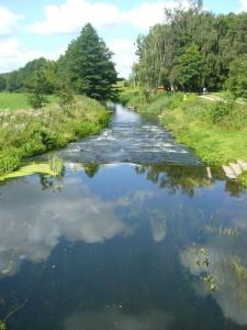 Heute absolvierten wir bei traumhaft schönem Sommerwetter einen weiteren Abschnitt unserer Warnow - Exkursionen. Hier sehen wir die Warnow bei Vorbeck.