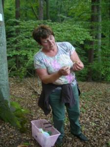Ganz besonders habe ich mich gefreut, unserer langjährige Pilzfreundin Angelika Boniakowski das erste mal auf einer unserer Pilzwanderungen begrüßen zu dürfen. Hier sehen wir sie bei der Begutachtung eines Breitblattes.