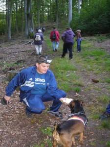 Auch ein Hund war heute wieder mal mit dabei. Leider war er aber nicht auf Trüffeln spezialisiert und wird hier mit der Witterung von Buckelr - Trameten vertraut gemacht.