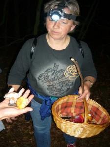 Pilzberaterin Irena Dombrowa wird mit zwei weiteren Täublingsfunden konfrontiert. Es handelt sich jeweils um einen minderwertigen Dickblättrigen Schwarztäubling und einen Zitronen - Täubling.