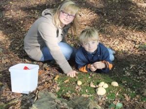 Sina und Jonas hat es wieder sehr gefallen und beide freuen sich schon wieder auf das nächste Jahr zum Pilzsesammeln und Braten im Forst Ritzerau. Sina ist übrigens die Patentante von Jonas.