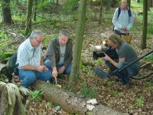 Hier erläutert Ulrich Klein dem Pilzfreund Jochen Schöttker, wie die Nährstoffausnahme beim Rotrandigen Baumschwamm über einen erhöhten Wasserdurchlauf maximiert wird und er deshlab in seiner Wachstumsphase sogenannte Gutationströpfchen absondert.