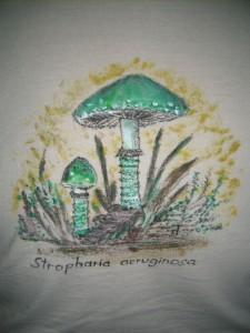 Mit dem Rückenbildnis des Grünspan - Träuschlings auf dem T - Shirt von Bärbel Schöttker auf unserer heutigen Semenar - Exkursion wollen wir in den metereologischen Herbst starten. Der Pilzherbst begann allerdings schon Mitte August.