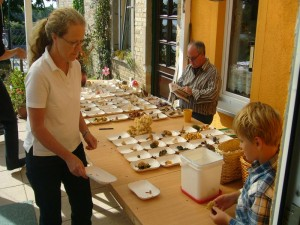 Während Monika und Jonas weitere Arten auf den Tisch brachten, begann Jochen schon mit der Bestimmung noch unklarer Täublingsfunde.