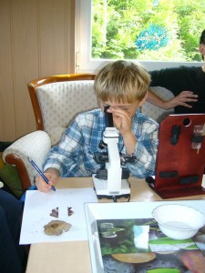 Und dann began Jonas, ohne das jemand von uns etwas sagte, ganz von sich aus die Sporen zu zeichnen, genau so wie es ein echter Mykologe tut!