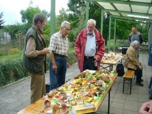 Am Nachmittag wurden die Funde nach Exkursionsgebiete getrennt auf Tischen ausgelegt, bestimmt und beschildert. Hier sehe wir die Pilzberater - Kolegen von rechts Jochen Meyer aus Stralsund, Arthur Frank und Dietrich Mausolf aus Rostock beim fachsimpeln.