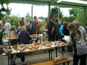 Auch die beteiligung an der diesjährigen Herbst- und Arbeitstagung der Pilzberater Mecklenburg - Vorpommerns war rekordverdächtig.