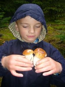 Jonas freut sich zu diesen jungen und kerngesunden Steinpilzen. Er bot sie mir heute zum Tausch gegen zwei siamesische Maronen - Röhrlinge an. 06.10.2012 im Segeberger Forst.