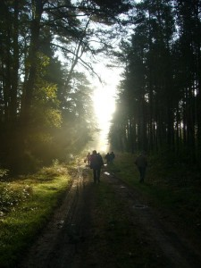 Bei strahlendem Sonnenschein in noch leicht dunstiger Luft und frische Temperaturen starteten wir in den regennassen Herbstwald und die Erwartungen waren hoch.