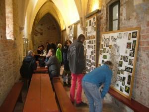 Bevor es zur eigentliche Ausstellung ging, konnte man sich an großen Schautafeln über die Aktivitäten der Pilzfreunde in den vergangenen Jahren informieren.