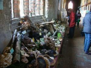Gewaltig wirkt auch die Ausstellungsfläche der vielen Holtpilze wie Porlinge und Schichtpilze. Sie wurden teilweise mit Axt und Säge geerntet.