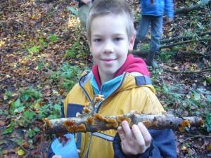 Der Samtige Schichtpilz gehört zu den Müllwerkern des Waldes. Er baut Totholz zusammen mit vielen weiteren Pilzen ab und verwandelt es zu wertvollem Humusboden.