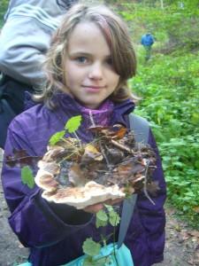 Dieses Mädchen hat den Wurzelschwamm gefunden. Er ist ein aggressiver Holzzerstörer, der lebende Bäume, speziell Fichten befällt und die Rotfäule der Fichte auslöst. Er ist somit ein bedeutender Forstschädling.